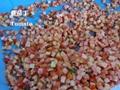 CD-800  蔬果切丁機 切條機  水果切丁機  4