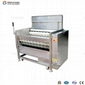 MSTP-500 Fresh Ginger Washer & Peeler
