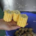 MC-365 玉米切斷機 4