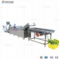 WA-2000 Vegetables Washing Machine 3