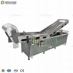 PT-2000 Vegetable Blanching Machine