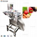 CD-800 Vegetable and Fruit Dicing Machine