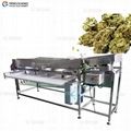OG-303 Hemp frower Sorting Machine