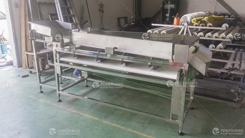 OG-303 Hemp frower Sorting Machine 3