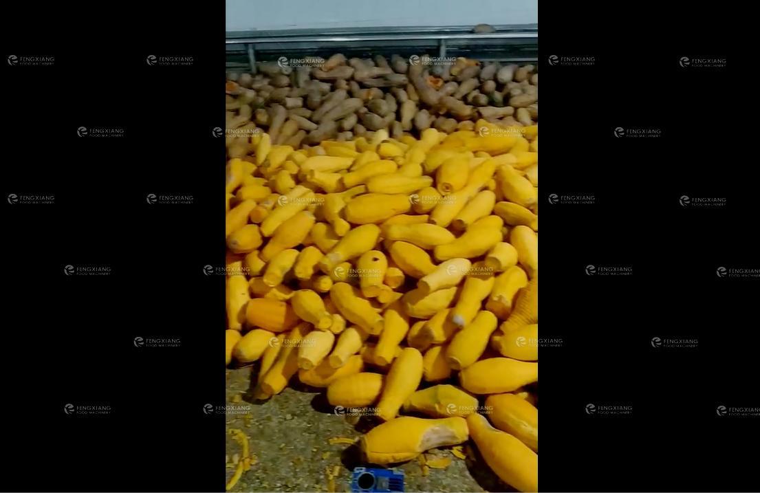 FXP-66 Fruit peeler 5