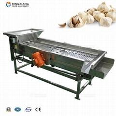 QG-202 Vibration Sorting Machine Garlic Grading Processing Equipment