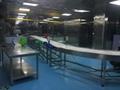 PVC Belt Food Grade Degree Customized Turning Conveyor for Production Line