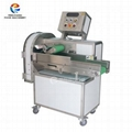 FC-306L Large Capacity Multifunction Vegetable Cutting Slicing Machine