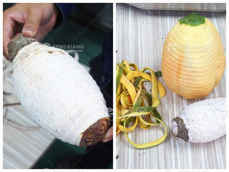 台式小型瓜果削皮机 菠萝木瓜椰子削皮机 6