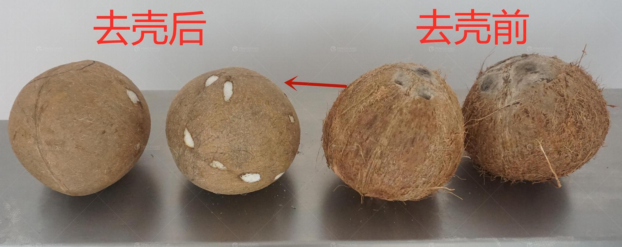 椰子去壳机 硬壳去皮机 2