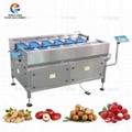 电子称重机 水果蔬菜包装称重机