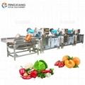 三段式果蔬清洗机+振动沥水机