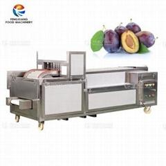 Automatic Apricot Seed Pitting Machine Prune Core Removing Separating Machine