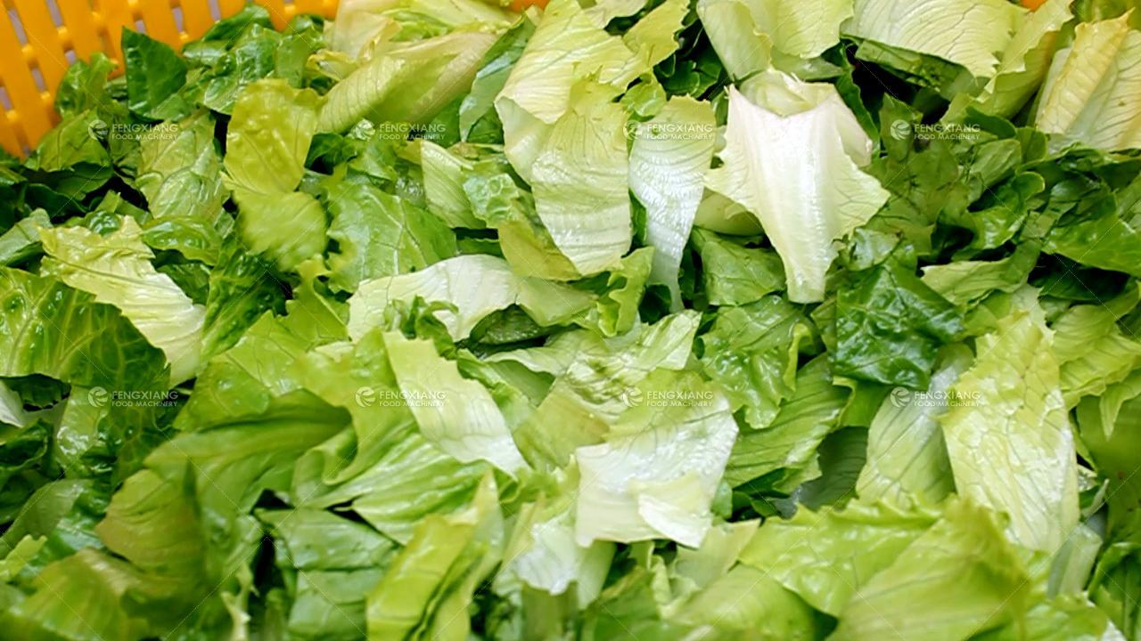 双输送带果蔬连续性脱水机 薯条脱水机 7