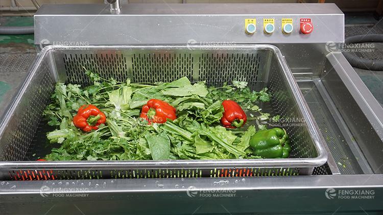 WASC-10 小型果蔬清洗消毒機   5