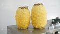 菠萝削皮机 小型瓜果削皮机 7