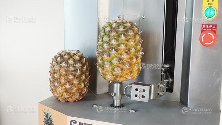 菠萝削皮机 小型瓜果削皮机 4