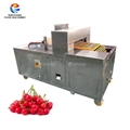 Commercial Automatic Cherry Pitting Machine Fruit Destoning Machine