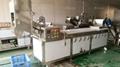 PT-2000 Vegetable Potato Chips Blanching Machine