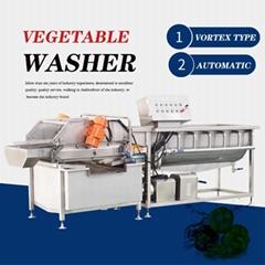 凤翔 涡流式洗菜机 果蔬杀菌清洗机