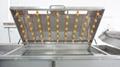 Industrial Fruit Processing LIne Orange Washing Dewatering Sorting Machines