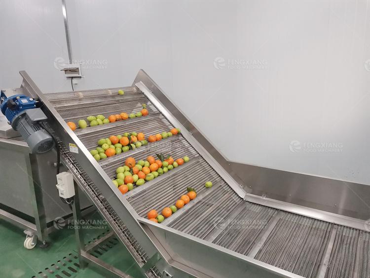 凤翔 红薯橘红清洗风干分级线 4