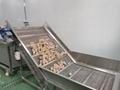 凤翔 红薯橘红清洗风干分级线 3