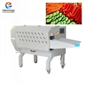 Fengxiang TS-170 Multifunction Vegetable