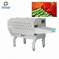 Fengxiang TS-170 Multifunction Vegetable Cutting Machine Slicing Machine Slicer