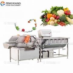 鳳翔 渦流式洗菜機 果蔬殺菌清洗機