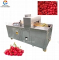 Commercial Automatic Cherry Pitting