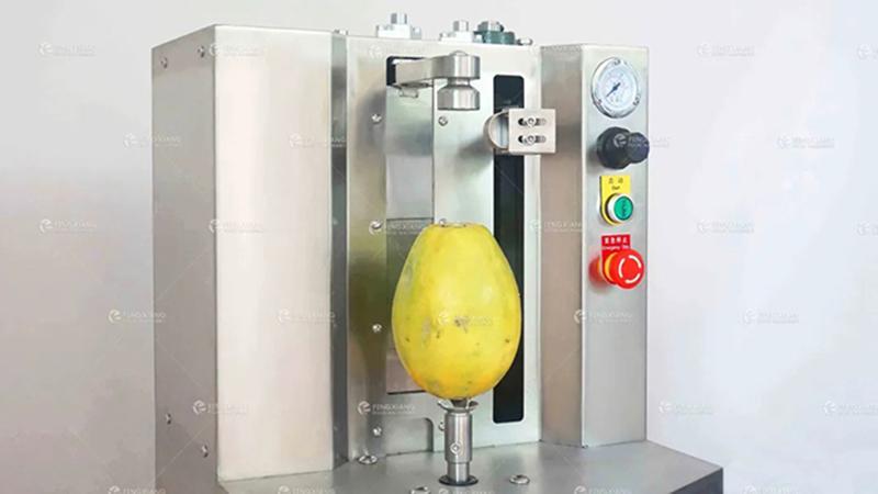 台式小型瓜果削皮机 菠萝木瓜椰子削皮机 4