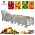 Industrial Large Vegetable Fruit Spray
