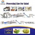 vegetable salad cutting washing drying machines processing line wholesale