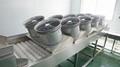 Potato Production Line Ginger Washing Line Vegetable Washing Drying Machine