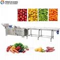WA-1000 Vegetable Washing Machine Fruit