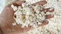 鳳翔 木薯清洗削皮切丁生產線