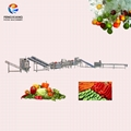 Vegetable Salad Processing Line Fruit And Vegetable Cutting Washing Machine