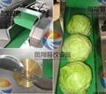 (FC-306) 大型切菜机 & 视频