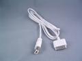 iPod IEEE1394傳輸
