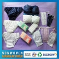 Wholesale Nonwoven Maternity Women Female Lady Hot Sexy Disposable Panty 1