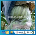 High Quality Vertical Garden Bag Wholesale Fruit Insect-Resistant Bags Gardening