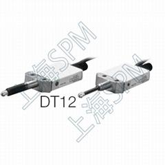 DT12P