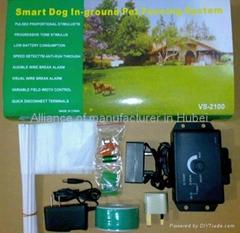 Smart dog Ln-ground pet