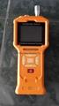 臭氧檢測儀 2