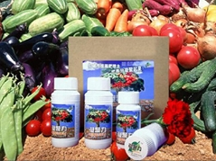 《凝聚力》NINGJULI農作物養分強化吸收劑