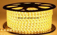 ETL CE IP65 120V 220V  5050 led strip light