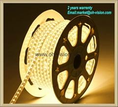 ETL CE led flexible strip light 3014/5050/2835 waterproof strip light