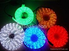 LED 彩虹管/水管灯