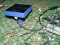 太陽能LED燈串